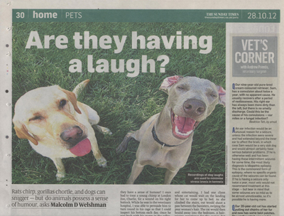 A Feature in The Sunday Times